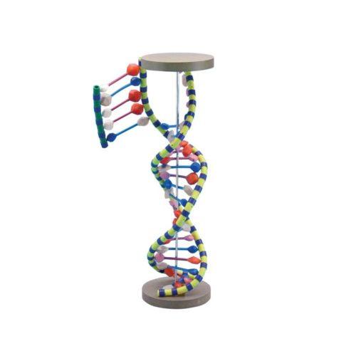 NABLA-BIO-DNA3