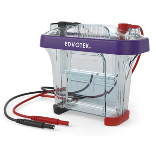 camera elettroforesi